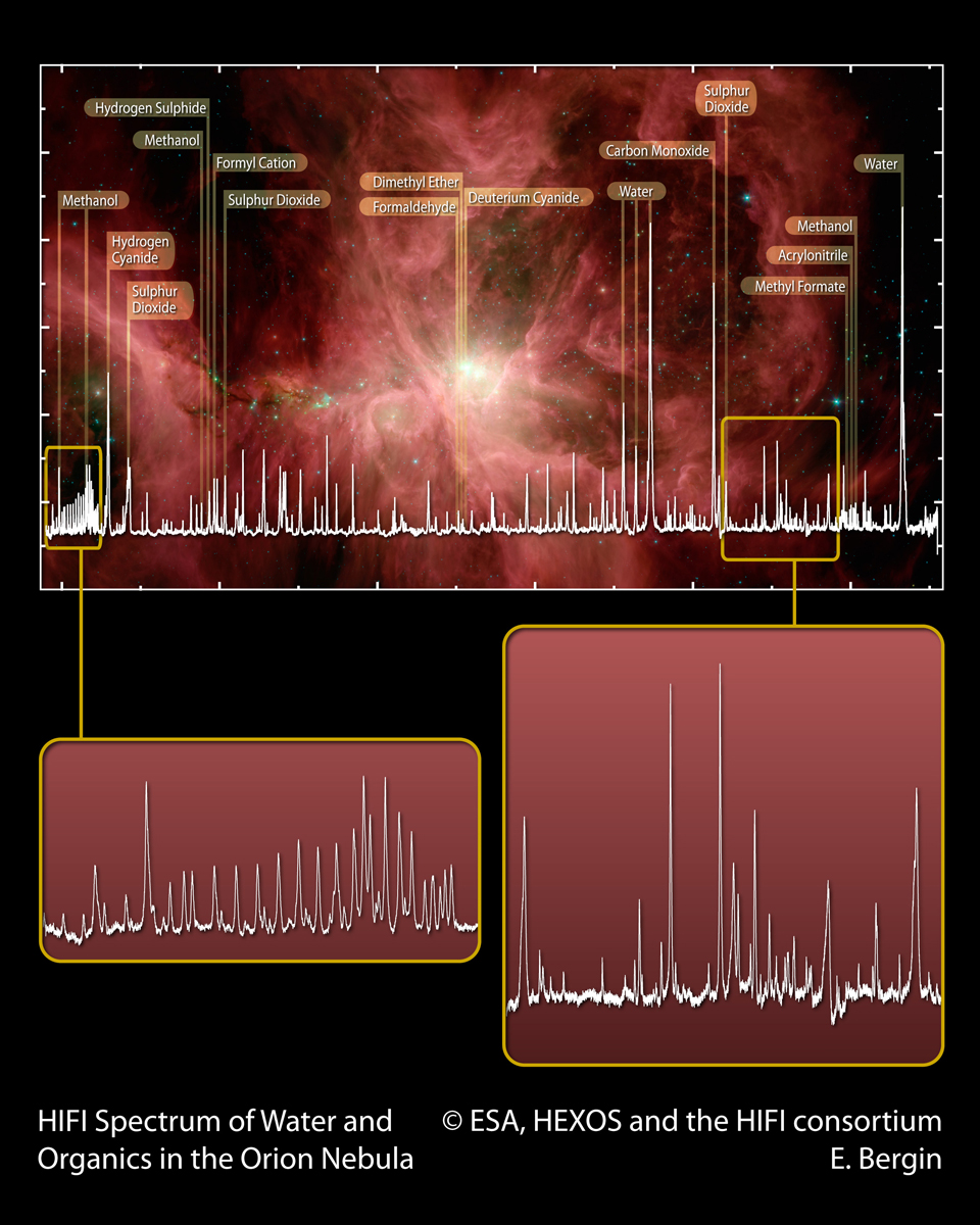 HIFI spectrum of water and organics in the Orion Nebula